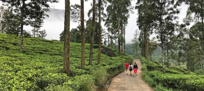 Surprising Sri Lanka – Howzat?!